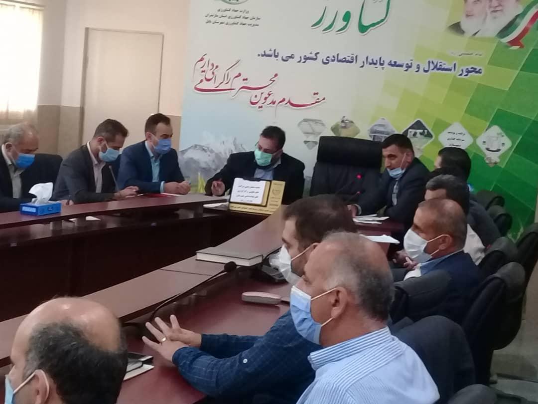 برگزاری جلسه پایش و نظارت بر توزیع نهاده های دامی استان در شهرستان بابل